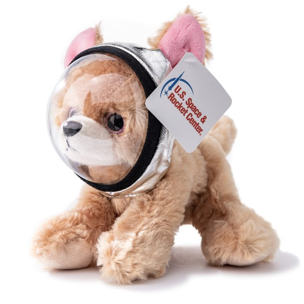 Miniz Chihuahua with Space Helmet,716610HSR