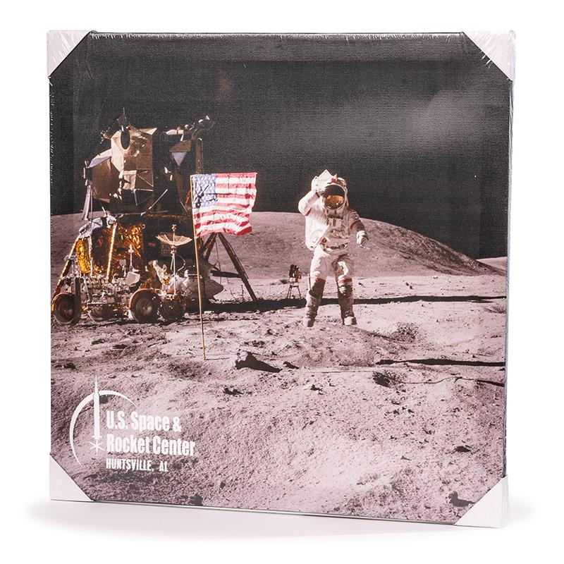 Lunar Scene Canvas,50TH ANNIVERSARY,14/0239 IMP