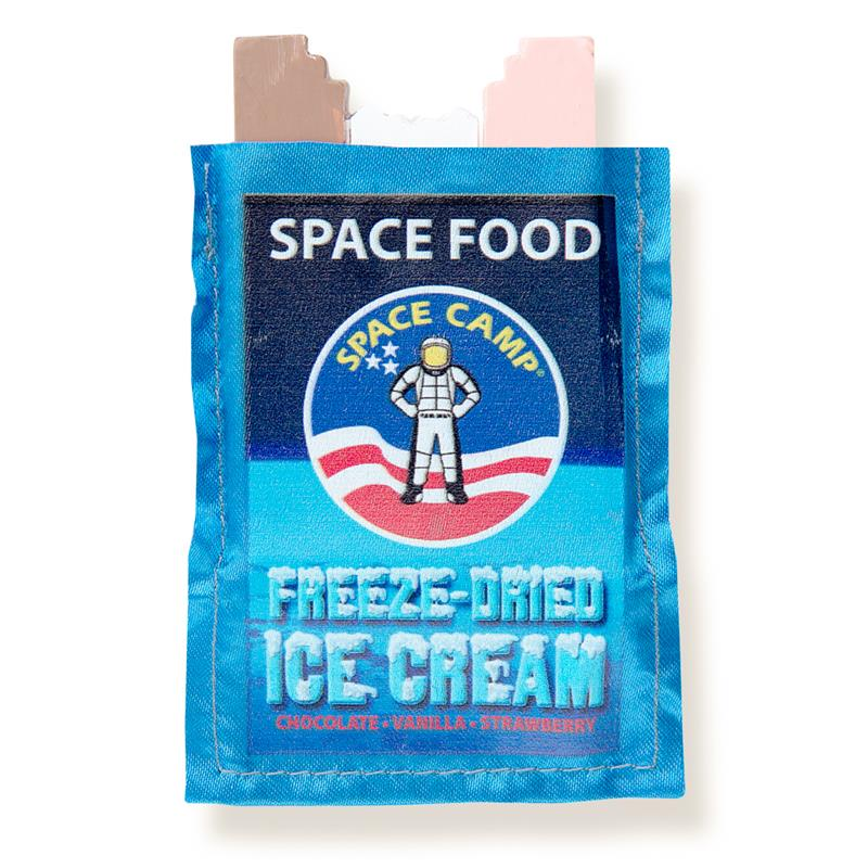 Space Camp Ice Cream Magnet,SPACECAMP,NOV999 IMP